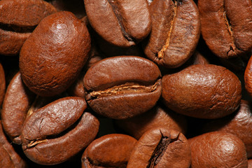 Coffee beans. Close up view