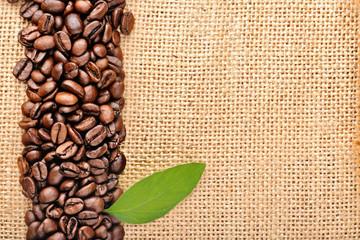 Fototapeta jasna fototapeta z ziarenkami kawy