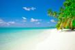 Holiday Paradise