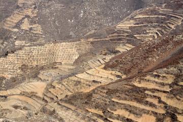 terraced on the hillside