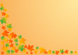 Vector illustration an autumn orange background with leaves