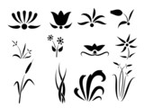 Set of flower and plants silhouettes ornament