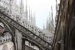Duomo di Milano, Milan.