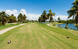 Golf Course Tee Box and Fairway in Miami poster