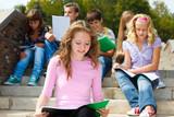 Highschool students studying