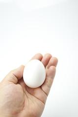 卵を安全に届ける