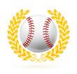 Baseball emblem
