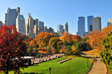 Fototapety Autumn in the Central Park & NYC.