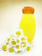 herbal shampoo bottle among daisy flowers