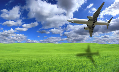 Airplane flying above green field
