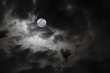 Spooky full moon and eerie white clouds