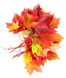 fall leaves decoration