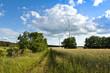 Windkraftanlage - Landschaft