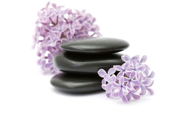 massage stones and lilac flowers