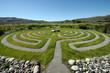 Leinwanddruck Bild - Washington outdoor Labyrinth