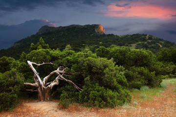 Crimea. Stormy sunset.