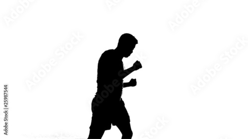 Silhouette of Boxer