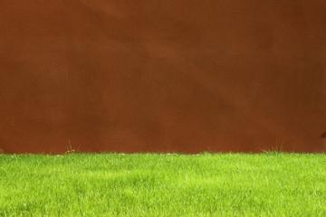 pelouse et mur crépi