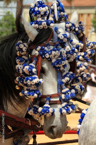 Caballo, Feria de Jerez