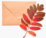 autumnal envelope