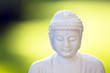 White Buddha on green