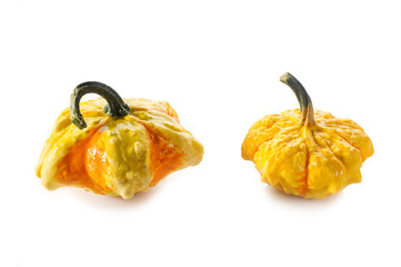 strange pumpkins- zucche strane