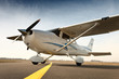 canvas print picture - Cessna 172