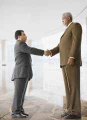 Tall businessman shaking hands with short businessman