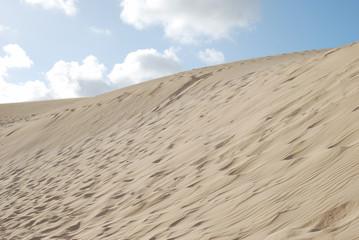 Paisaje de dunas
