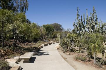 Cactus Garden at Balboa Park