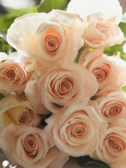 Close up of bouquet of roses