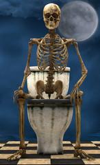 Skeleton toilet moonlight