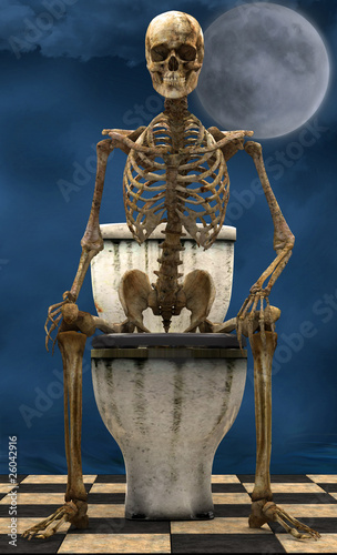 Skeleton toilet moonlight