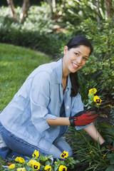 Hispanic woman planting flowers in backyard