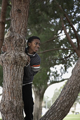 African boy climbing in tree in park