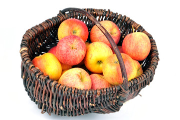 Le panier de pommes