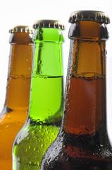 Bier in Flaschen