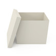 Open Cardboard Box isolated on white - 3d illustration