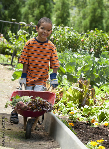 Mixed race boy with wheelbarrow in garden