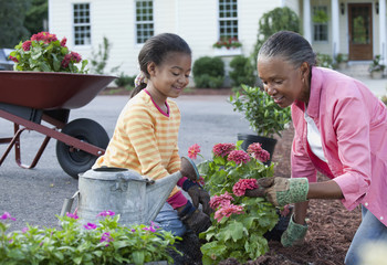 African grandmother and granddaughter planting flowers in garden