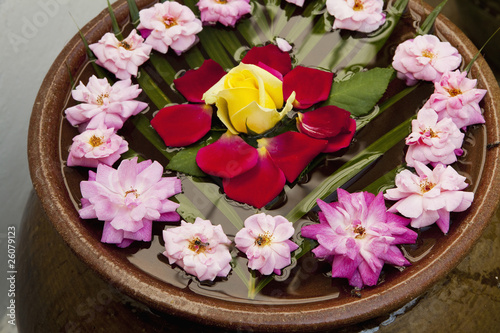 Flowers floating on water in bowl