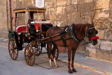 Maltese Karrozzin