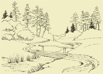 Forest landscape with stream