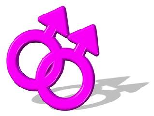 3D Gay Ehe Pink