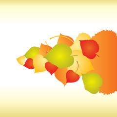 Abstract backgrounds with fall Leafs - vector illustration
