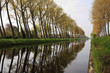 Bruges canal tree reflection
