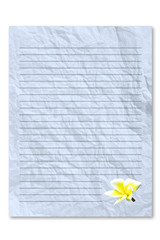letter paper on white background