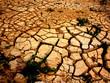 Sequía - 26136333