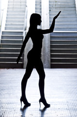 Nice Dance -Silhouettes