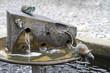 Leinwanddruck Bild - Katz-und-Maus-Brunnen in Stolpen (Vorwerk)